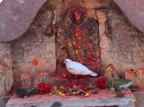 kalika-temple-dhulikhel